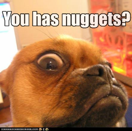 Nuggets? - I Has A Hotdog - Dog Pictures - Funny pictures of dogs - Dog Memes - Puppy pictures ...