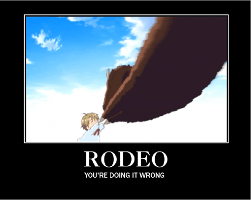 Very Demotivational - rodeo - Very Demotivational Posters ...
