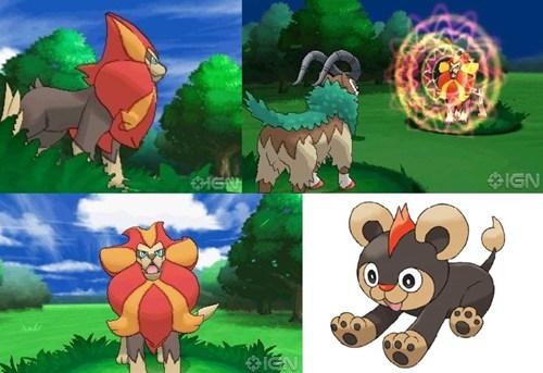 Litleo Evolution