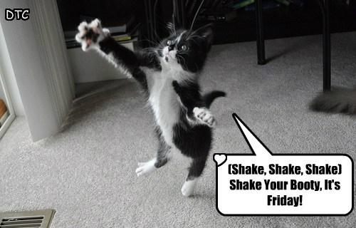 Shake Shake Shake Shake Your Booty It S Friday