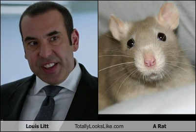 Louis Litt Totally Looks Like A Rat - Totally Looks Like