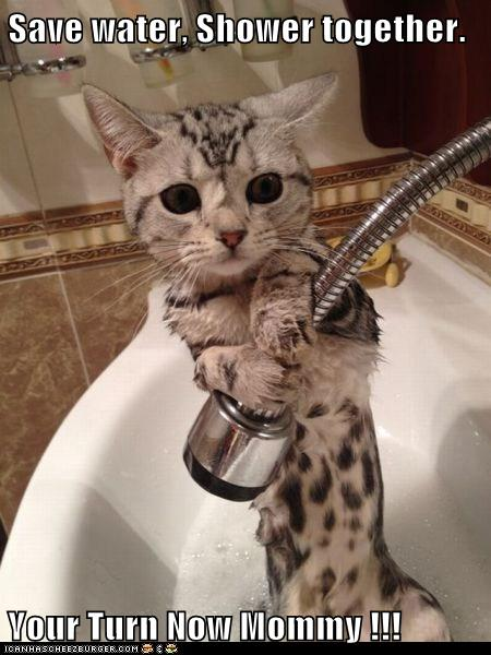 Save Water Shower Together Your Turn Now Mommy Lolcats Lol