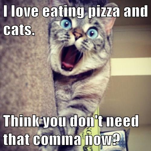 i love eating pizza and cats think you don t need that comma now