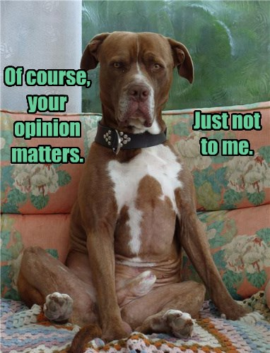 Everybody Has An Opinion - I Has A Hotdog - Dog Pictures - Funny pictures  of dogs - Dog Memes - Puppy pictures - doge