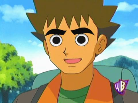 Brock With Rock Lee S Eyes Pokememes Pokemon Pokemon Go