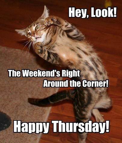 Happy Thursday - Cheezburger - Funny Memes | Funny Pictures