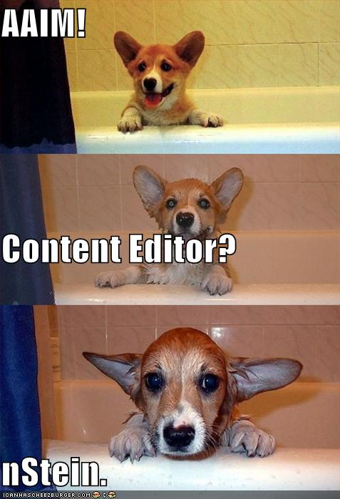AAIM! Content Editor? nStein. - Cheezburger - Funny Memes | Funny Pictures