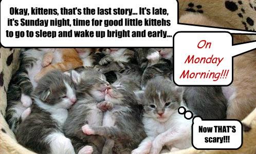 A really scary story! - Lolcats - lol | cat memes | funny cats