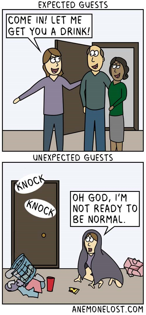 Comics When You Have Guests and Those Expectations Conflict with the Awk Reality