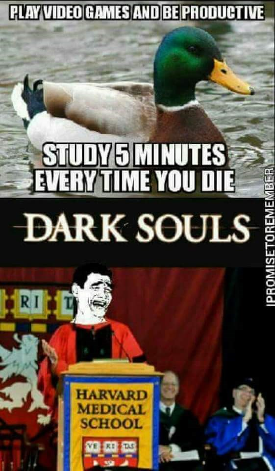 Video Games Dark Souls Video Game Memes Pok 233 Mon Go