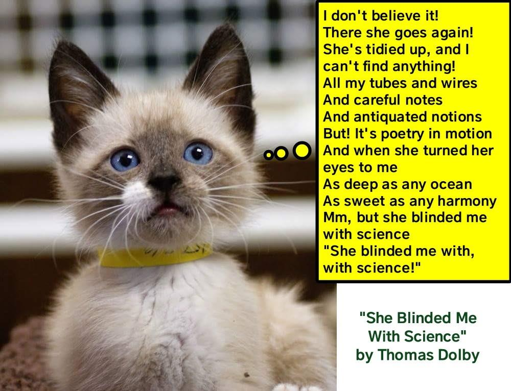 She Blinded Me With Science By Thomas Dolby Lolcats Lol Cat