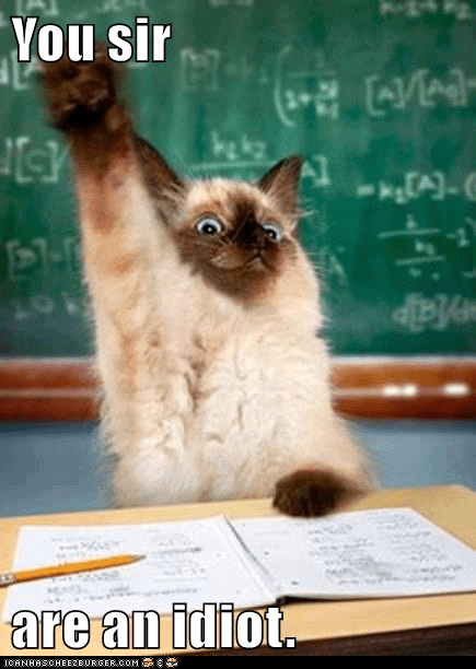 You Sir Are An Idiot Lolcats Lol Cat Memes Funny