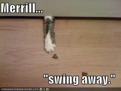 Tree Swing Meme: What the Customer Really Wanted   Future ...  Hobbs Meme Swing Away