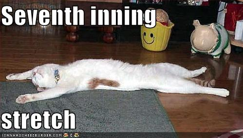 Seventh inning stretch - Cheezburger - Funny Memes | Funny Pictures