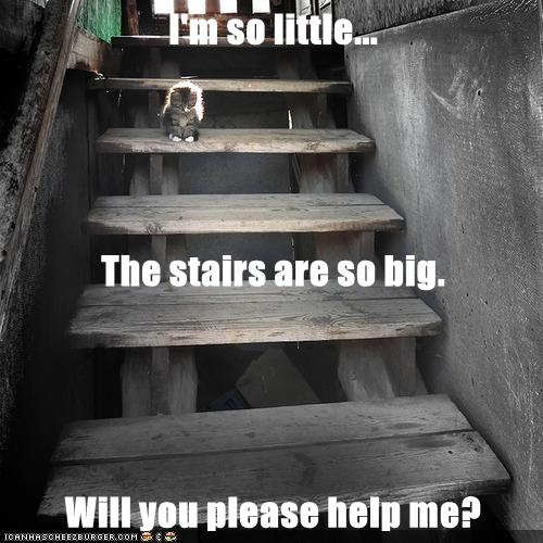 I'm so little... The stairs are so big. Will you please help me?