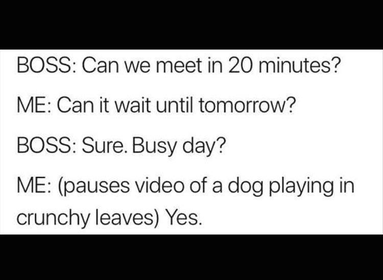 Too busy today