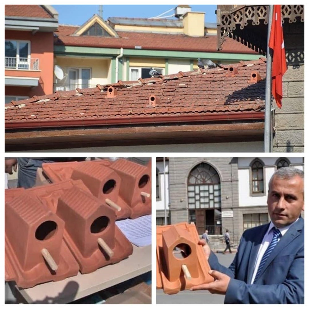 A factory in Turkey Making tiles that can offer shelter to birds