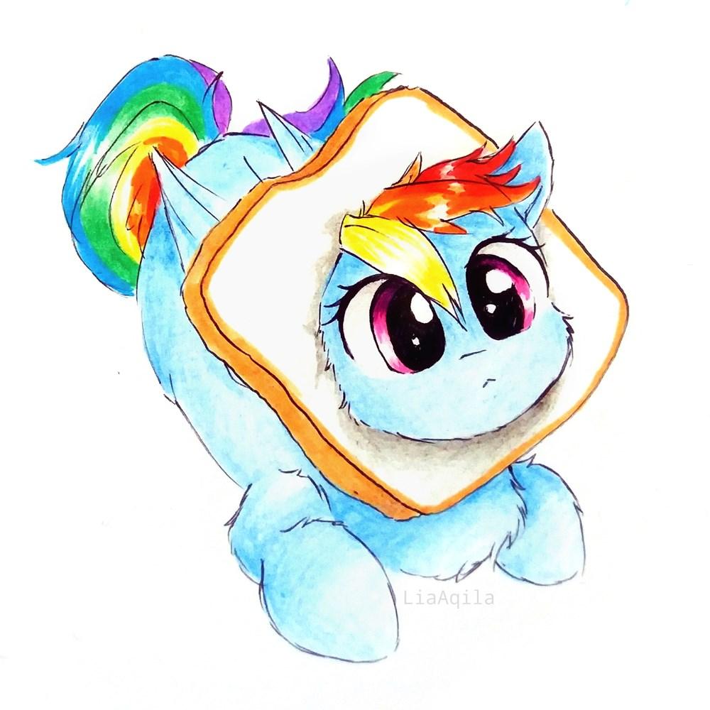 memes-acting-like-animals-rainbow-dash-l