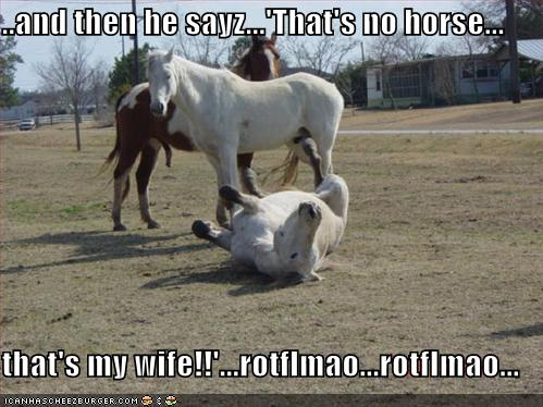 ..and then he sayz...'That's no horse... that's my wife ...