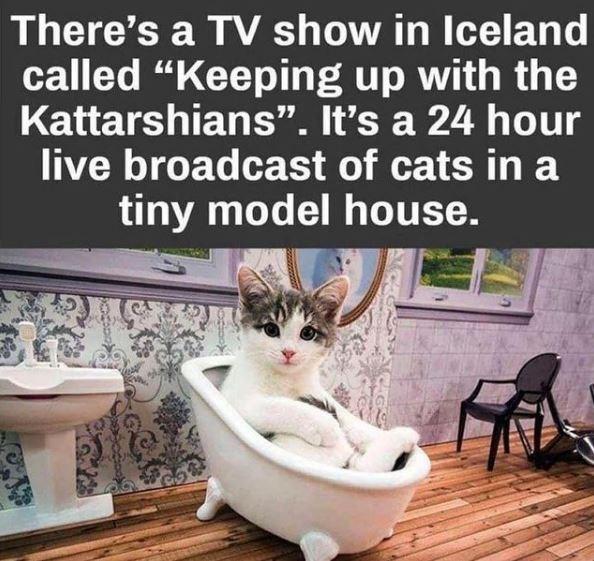 We'd definitely watch that