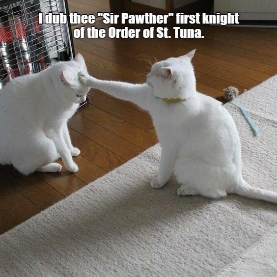 Sir Pawther
