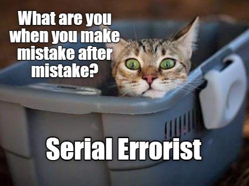 Serial Errorist