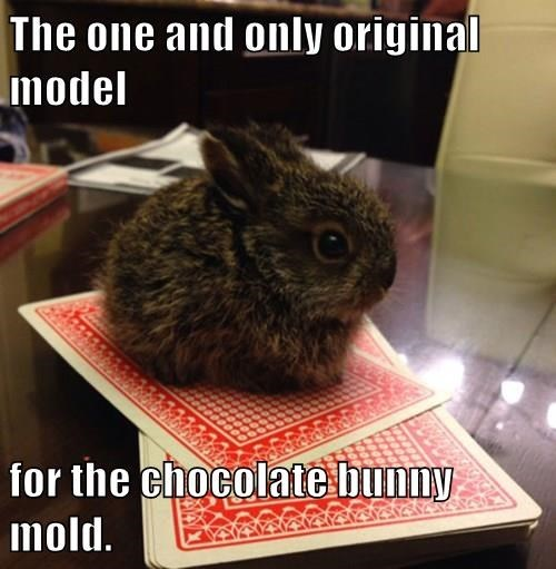 the OG chocolate bunny mold