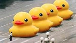 "Meanwhile in China of the Day: ""Big Yellow Duck"" and ""Today"" Banned from Weibo"
