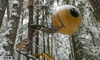Maybe it's not quite spring in your neck of the woods, in which case this tree house is for you!