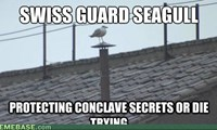Conclave Seagull is on Watch!