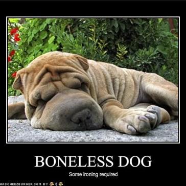 BONELESS DOG