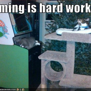 Gaming is hard work...