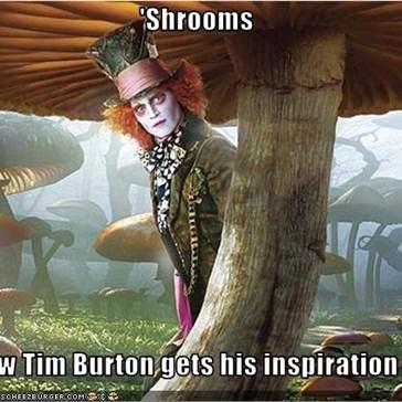 'Shrooms  How Tim Burton gets his inspiration