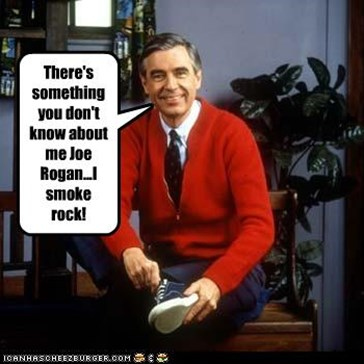 There's something you don't know about me Joe Rogan...I smoke rock!