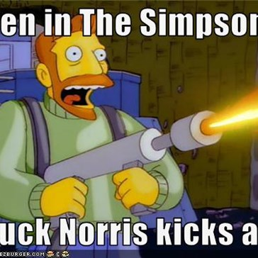 Even in The Simpsons    Chuck Norris kicks ass