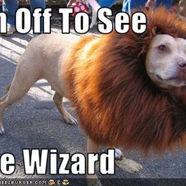 The Cowardly...Lion?