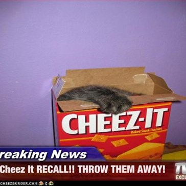 Breaking News - Cheez It RECALL!! THROW THEM AWAY!