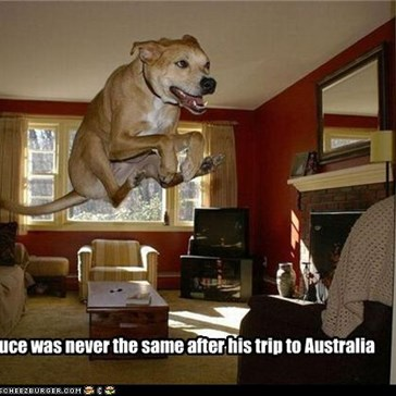Bruce was never the same after his trip to Australia