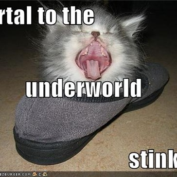 portal to the underworld stinks!