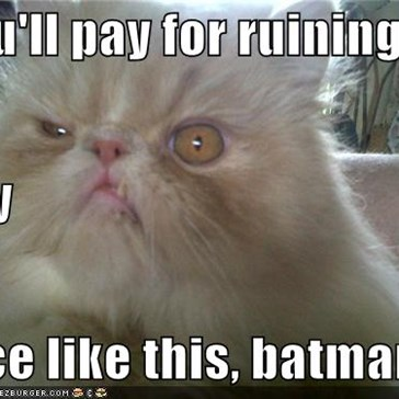 you'll pay for ruining  my  face like this, batman