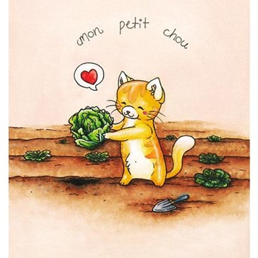 My Little Cabbage