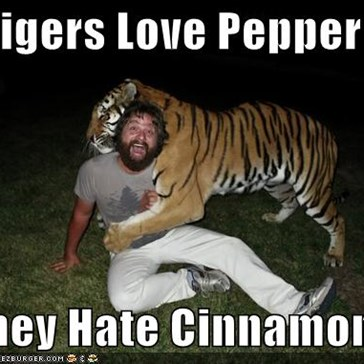 Tigers Love Pepper  They Hate Cinnamon