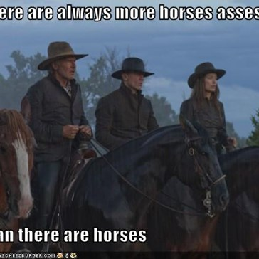 There are always more horses asses  than there are horses