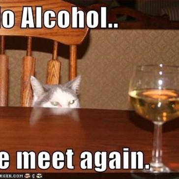 Hello Alcohol..  ....we meet again.