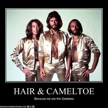 HAIR & CAMELTOE