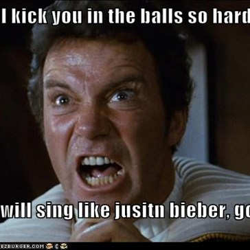 I will kick you in the balls so hard,  you will sing like jusitn bieber, got it?