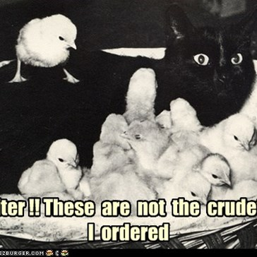 Waiter !! These  are  not  the  crudeties  I  ordered