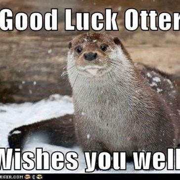 Good Luck Otter  Wishes you well!