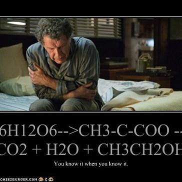 C6H12O6-->CH3-C-COO --> CO2 + H2O + CH3CH2OH
