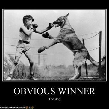 OBVIOUS WINNER